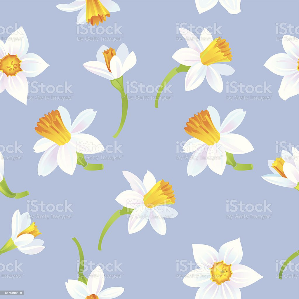 White Daffodils Pattern - Royalty-free Backgrounds stock vector
