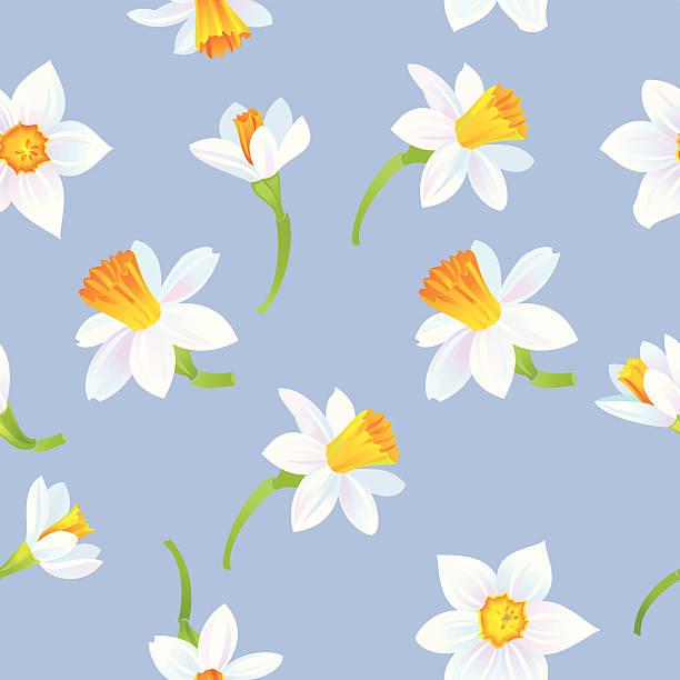 White Daffodils Pattern vector art illustration