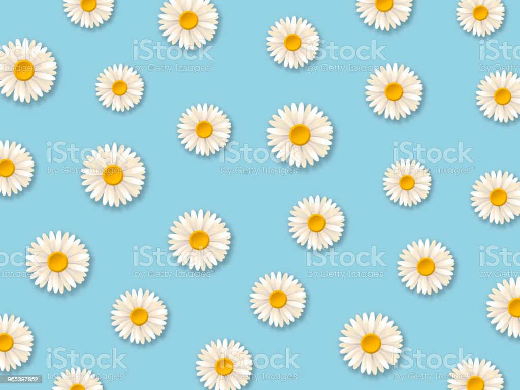 White daisy flowers. Pattern with chamomile flowers on blue background. Vector illustration white daisy flowers pattern with chamomile flowers on blue background vector illustration - stockowe grafiki wektorowe i więcej obrazów bez ludzi royalty-free