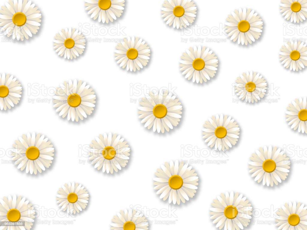 Fleurs de Marguerite blanche. Motif de fleurs de camomille sur fond blanc. Illustration vectorielle - clipart vectoriel de Affiche libre de droits
