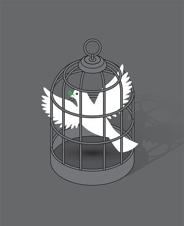 White Dove Holding Olive Branch Caged in a Birdcage Conflict War and Peace