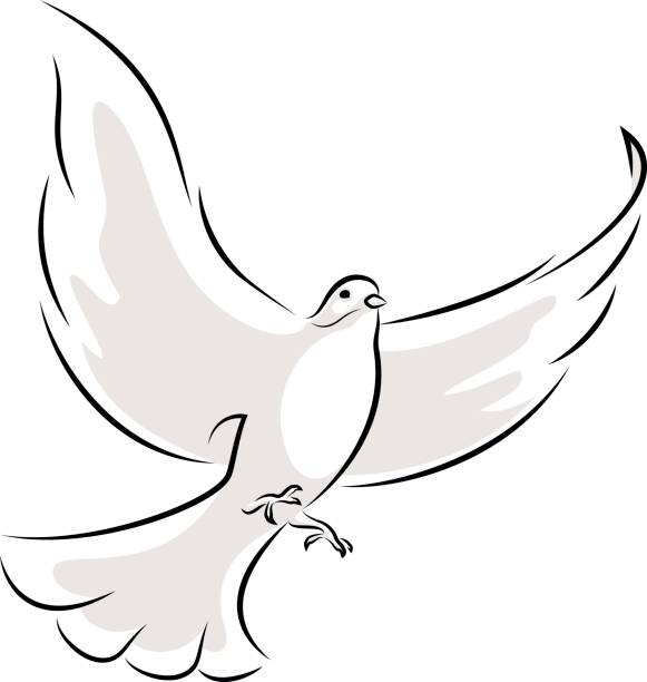White Dove Line Art Vector Illustration Of A Flying White Dove. pigeon stock illustrations