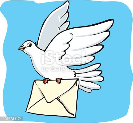White Dove with a letter