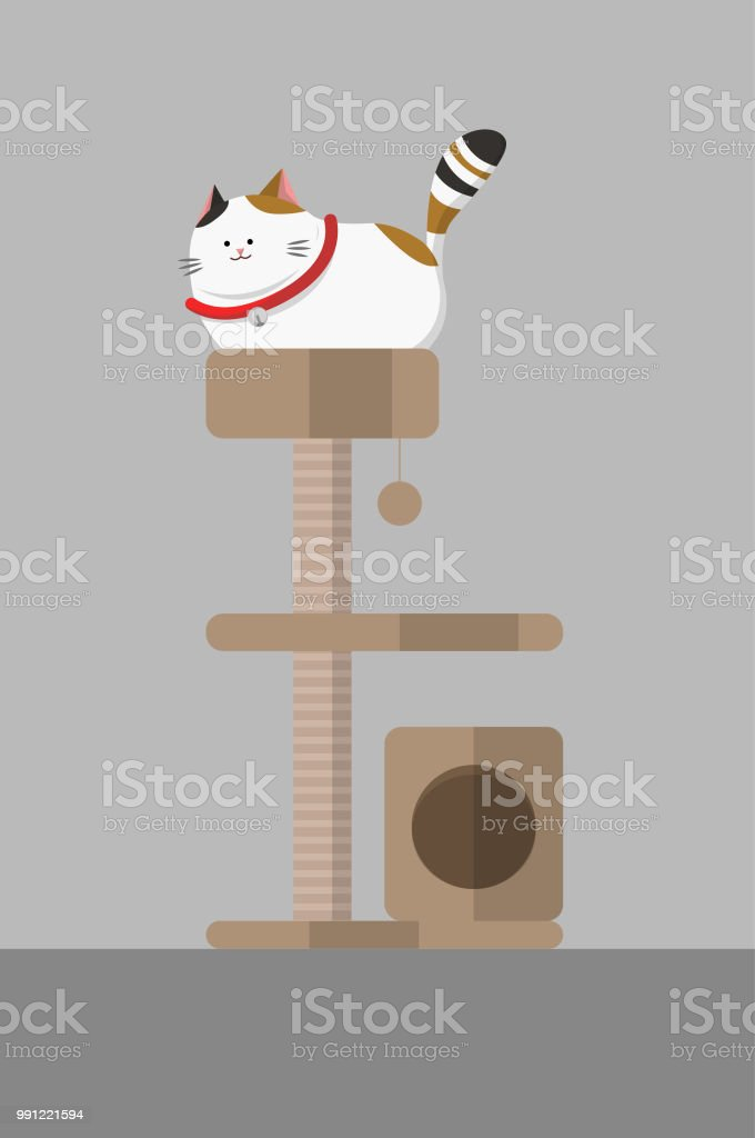 Exceptionnel White Fat Cat Wear Red Collar Sit On Cat Condo. Catu0027s Furniture. Royalty