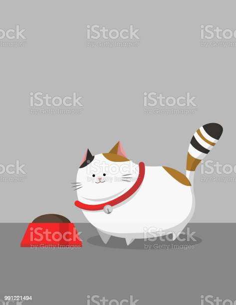 White fat cat wear red collar with food vector id991221494?b=1&k=6&m=991221494&s=612x612&h=x7jaljvcrcxii3u7rc5qsfa8mnw9g6cr8nrhapkbjdm=