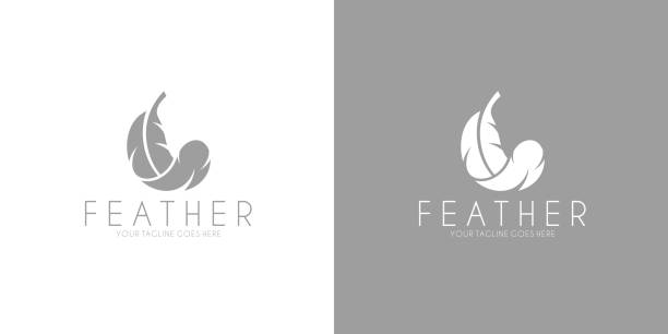 illustrazioni stock, clip art, cartoni animati e icone di tendenza di white feather. logo. black feather - piume colorate