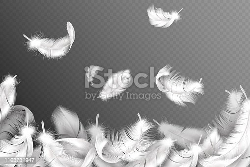 White feathers background. Falling flying fluffy swan, dove or angel wings feather, soft bird plumage. Style flyer with down object silhouette vector concept