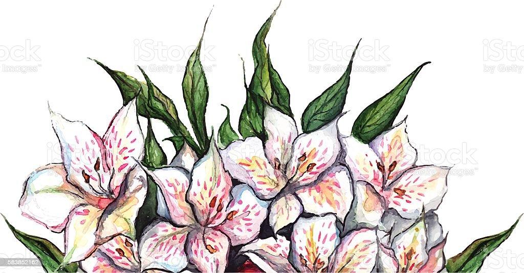 White flowers alstroemeria flower bouquet composition isolated vector - ilustración de arte vectorial