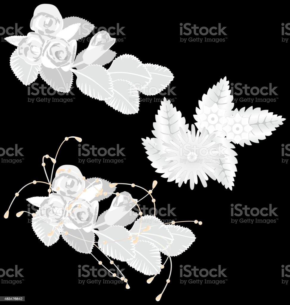 White flowers isolated on black vector art illustration