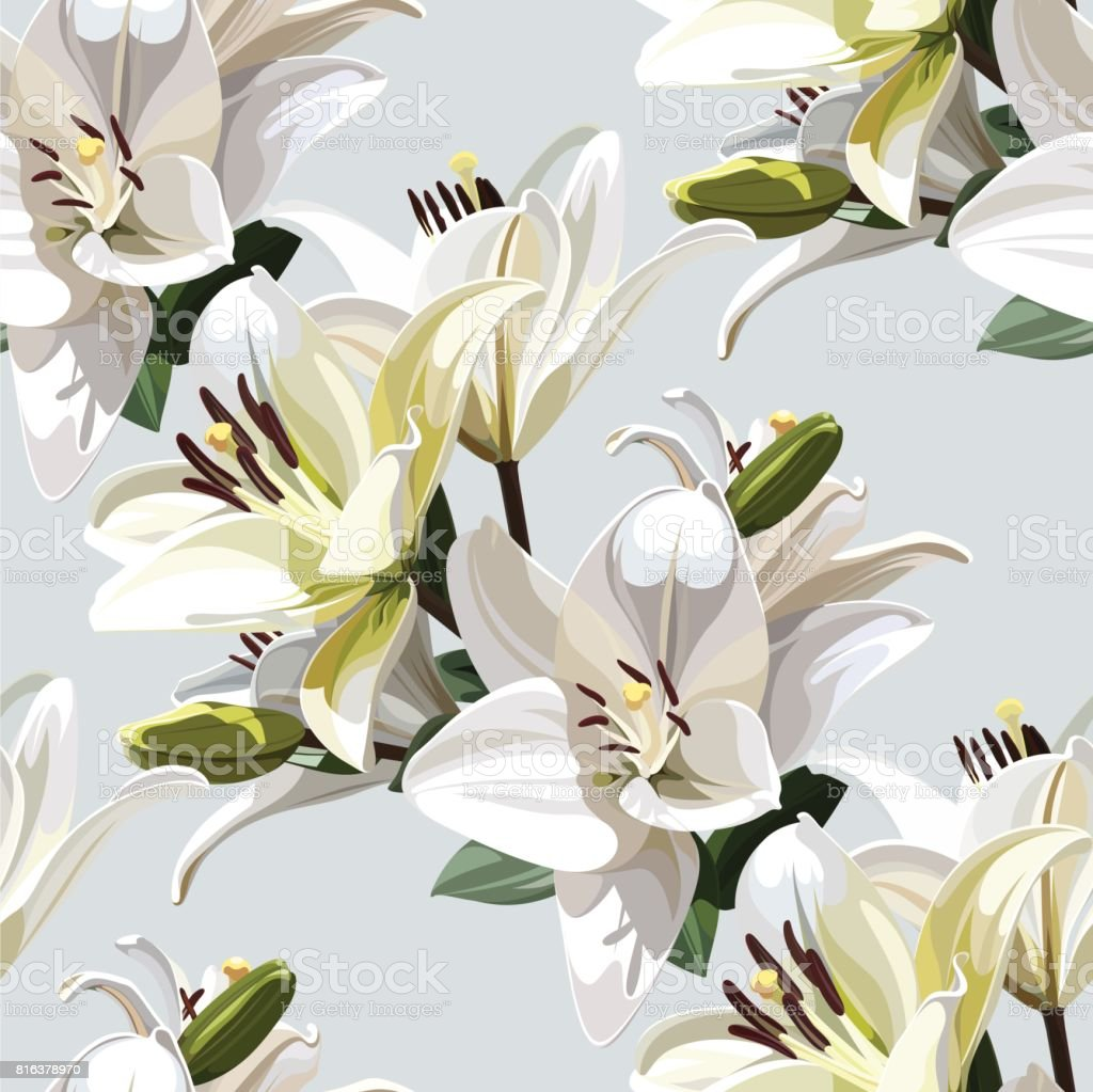 White flowers of lily seamless floral pattern on light background white flowers of lily madonna lily seamless floral pattern on light background izmirmasajfo