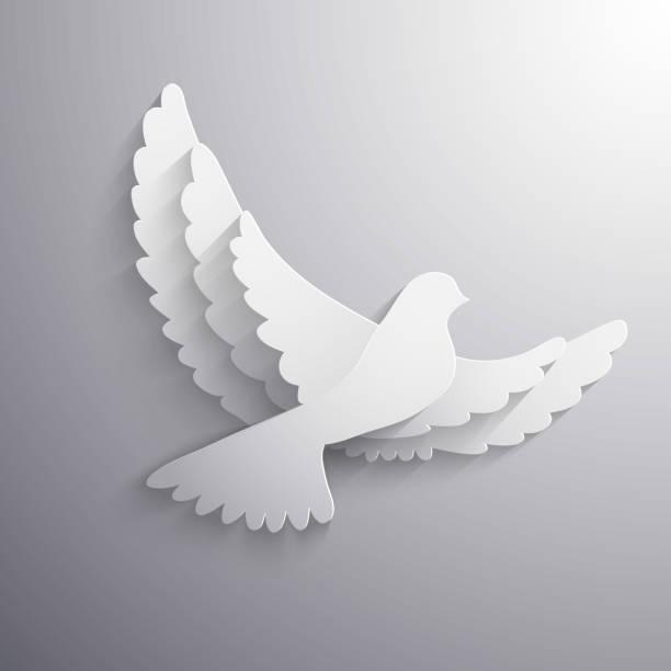 white-dove abstract illustration-eps10 vektor - wildtaube stock-grafiken, -clipart, -cartoons und -symbole