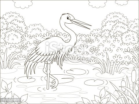 Wader in a pond among cane, grass and flowers of a meadow on a summer day, black and white vector illustration in a cartoon style for a coloring book