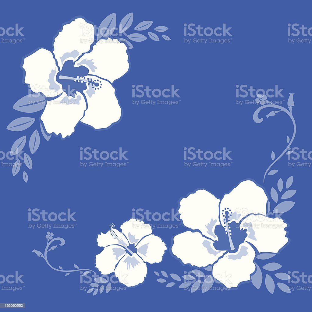 white hibiscus floral frame on blue background royalty-free stock vector art