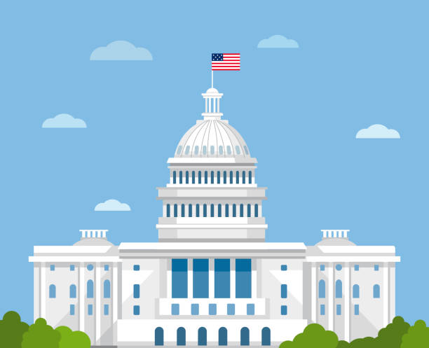 White house vector flat illustration. Washington DC. CAPITOL CAPITOL capitol hill stock illustrations