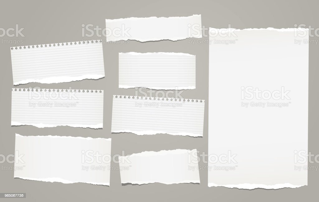 White lined torn note, notebook paper pieces for text stuck on gray background. Vector illustration. royalty-free white lined torn note notebook paper pieces for text stuck on gray background vector illustration stock vector art & more images of banner - sign