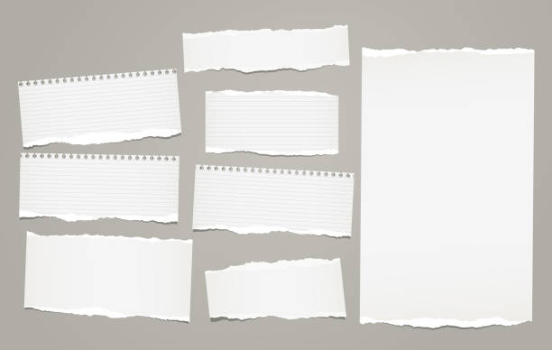 white lined torn note, notebook paper pieces for text stuck on gray background. vector illustration. - notatka stock illustrations