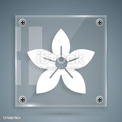 istock White Lotus flower icon isolated on grey background. Square glass panels. Vector Illustration 1270637824