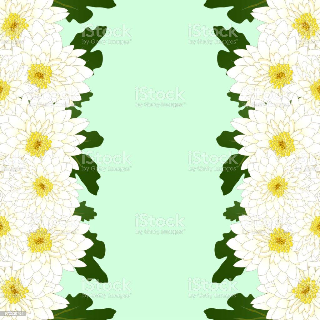 White mum chrysanthemum flower border stock vector art more images white mum chrysanthemum flower border royalty free white mum chrysanthemum flower border stock vector mightylinksfo