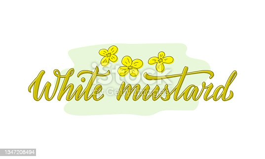 istock White mustard creative text with yellow flowers 1347208494