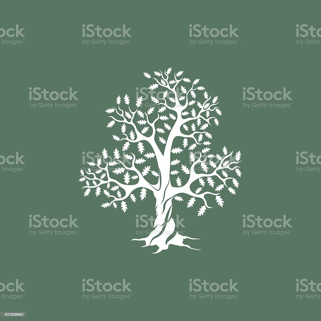 white oak tree silhouette on green background vector art illustration
