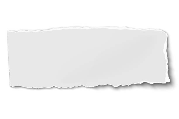 白色長圓形紙撕裂白色背景軟陰影 - 報紙頭條 幅插畫檔、美工圖案、卡通及圖標
