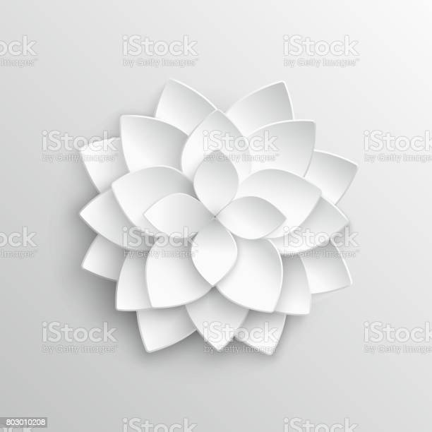 White paper 3d lotus flower in origami style vector illustration vector id803010208?b=1&k=6&m=803010208&s=612x612&h=kgk45csdlublljcrqmoydun7b3gw37jqiczarb629zi=