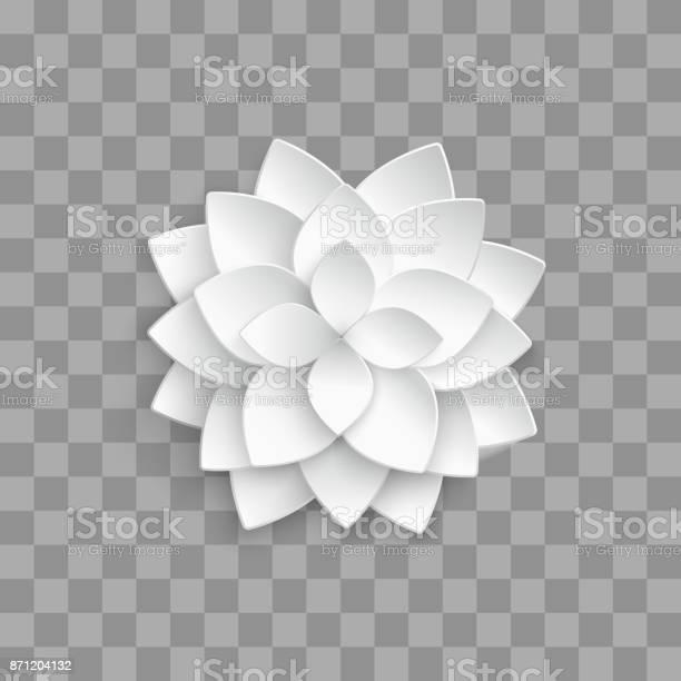 White paper 3d lotus isolated on transparent background vector id871204132?b=1&k=6&m=871204132&s=612x612&h=nxtbnmo xax cca9xdxvmrdc4phgxjzsmrf7sinm5ku=