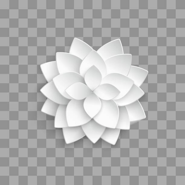 ilustrações, clipart, desenhos animados e ícones de lótus de 3d de papel branco isolado em fundo transparente - lotus
