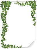 white paper sheet decorated ivy