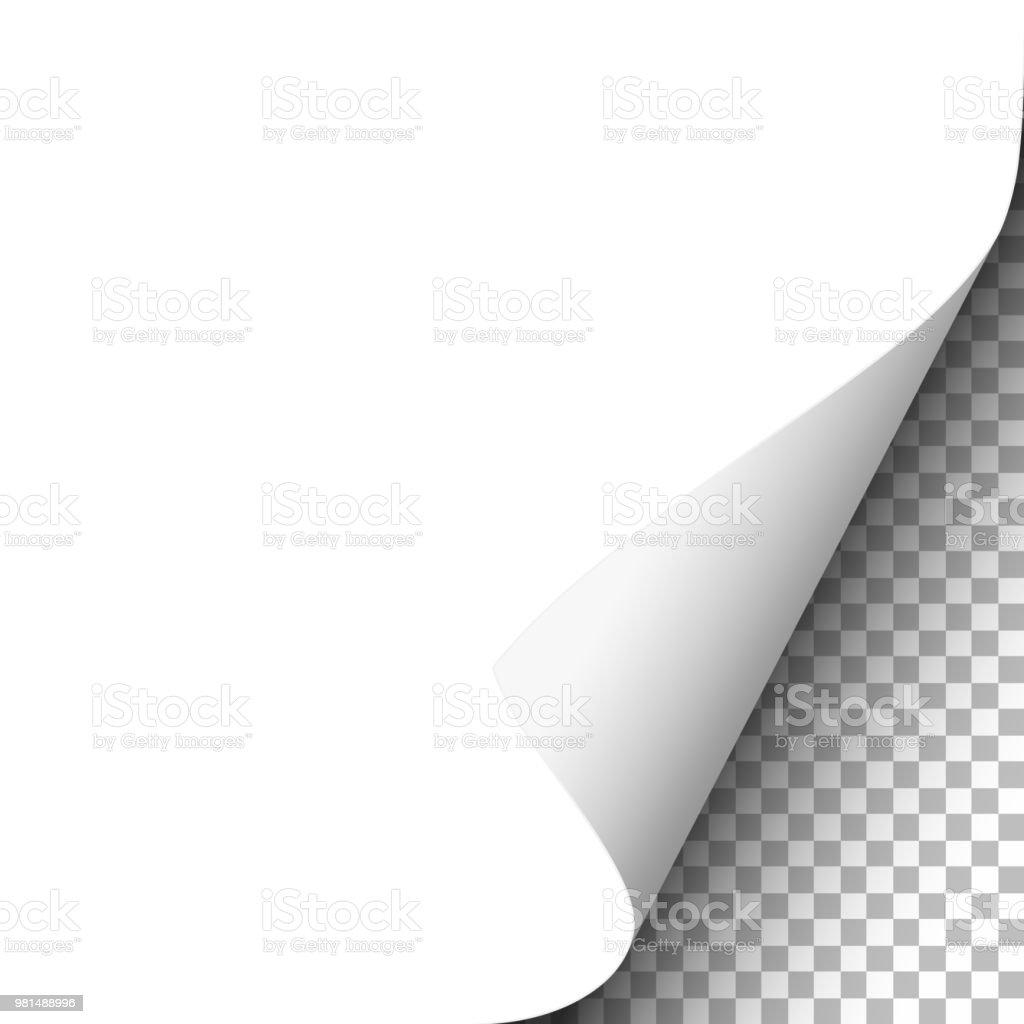 White paper sheet with lower right curl. Vector template paper design. - Grafika wektorowa royalty-free (Bez ludzi)
