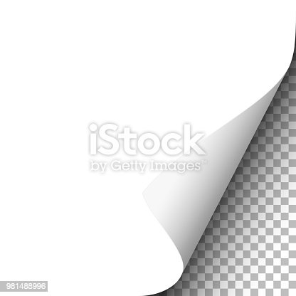 White paper sheet with lower right curl. Vector template paper design.