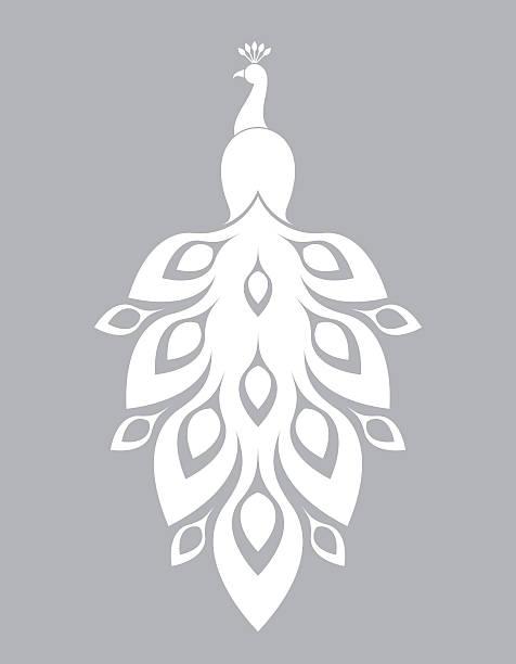 белый павлин  - peacock stock illustrations