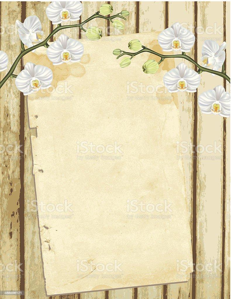 White Phalaenopsis Orchid On Old Wood vector art illustration
