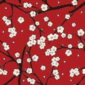 White Plum Blossom Flower on Red Background. Vector Illustration.