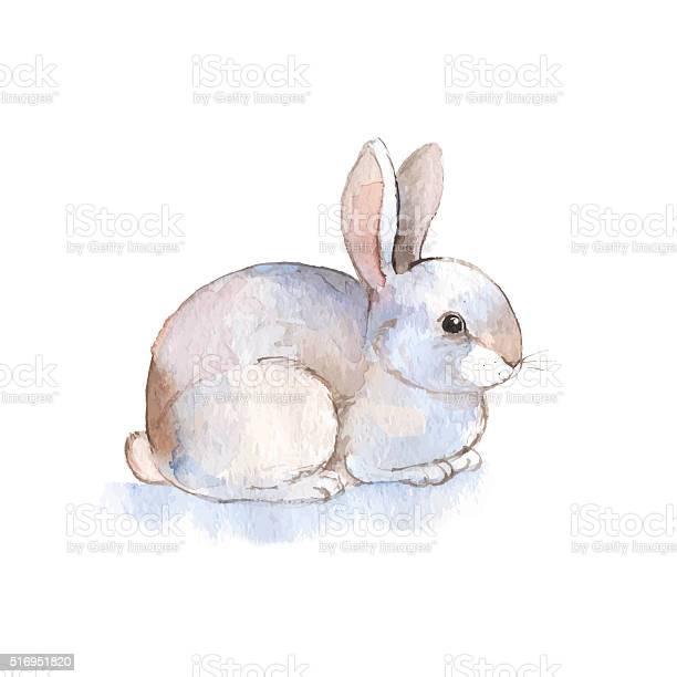 White rabbit 2 watercolor illustration in vector vector id516951820?b=1&k=6&m=516951820&s=612x612&h=d dt1cu5dgm8 iuvq6xmvguu3abjtkbsi19ndvb3xkm=