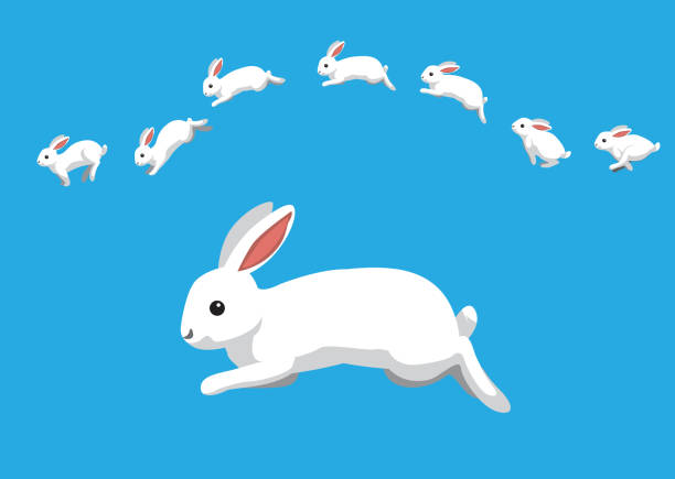 white rabbit jumping motion animation sequence cartoon vector illustration - kaninchen stock-grafiken, -clipart, -cartoons und -symbole