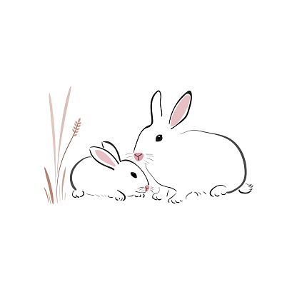White rabbit with cub in japanese style on a white background. Bunny in simple style. Animal sketch.