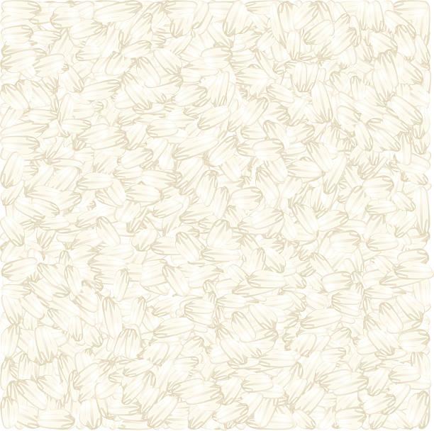 white rice vektor-hintergrund - risotto stock-grafiken, -clipart, -cartoons und -symbole