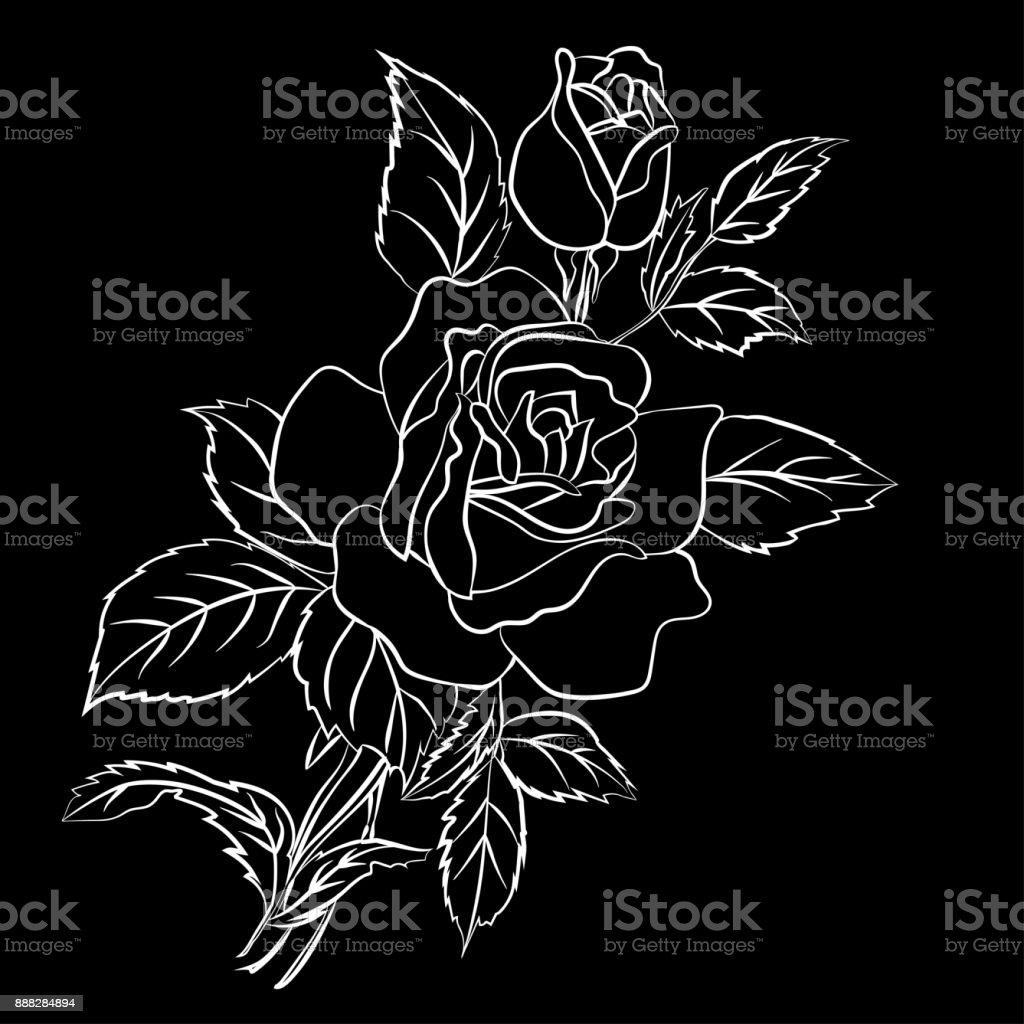 Vetores De Desenho De Rosa Branca Em Fundo Preto E Mais