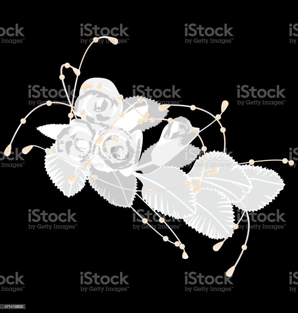White roses isolated on black vector art illustration