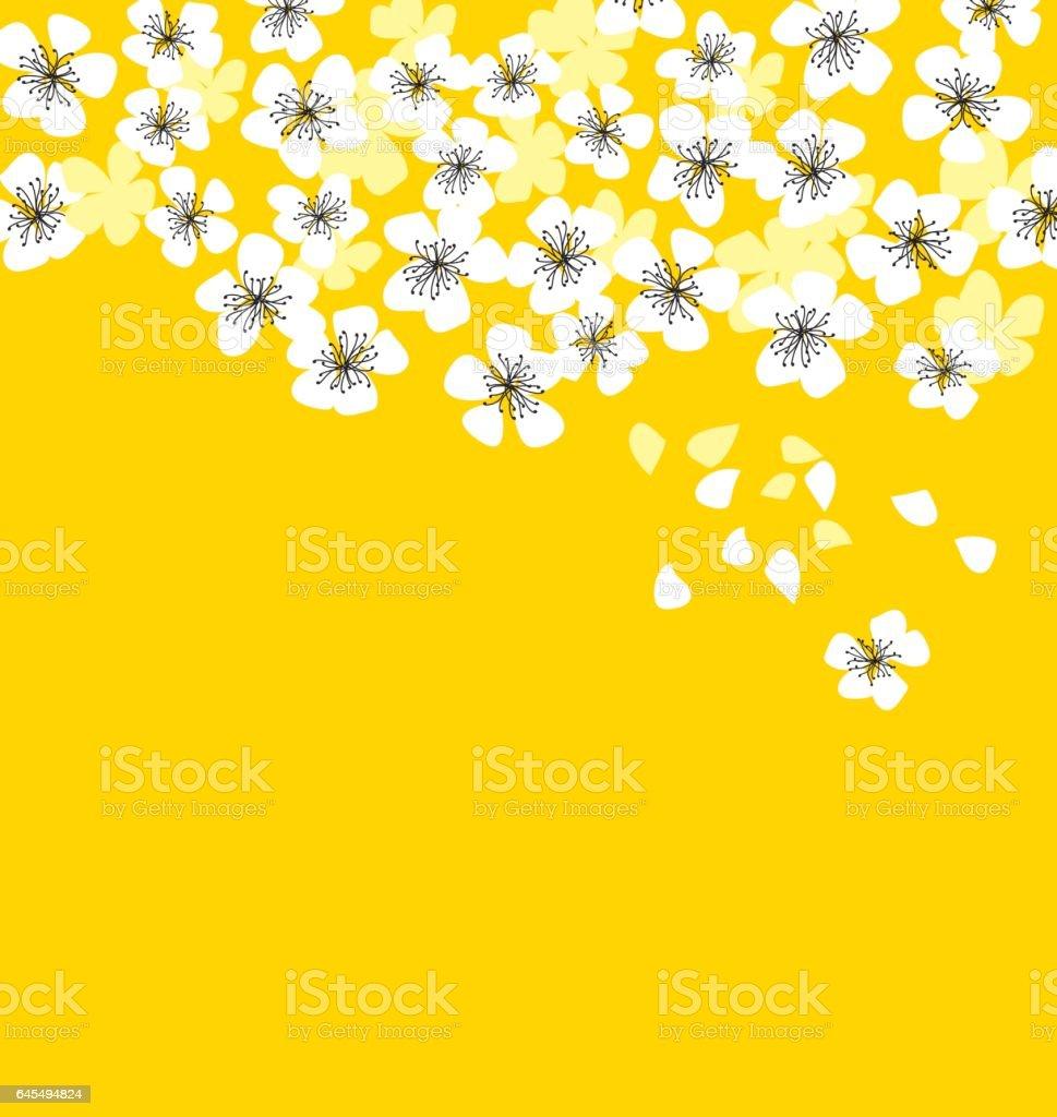 white sakura blossom on sunny yellow background elegant