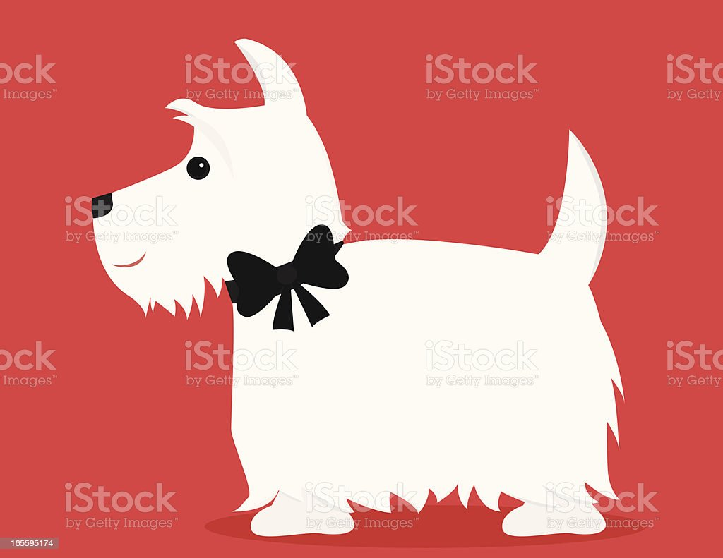 White Scottie royalty-free white scottie stock vector art & more images of animal