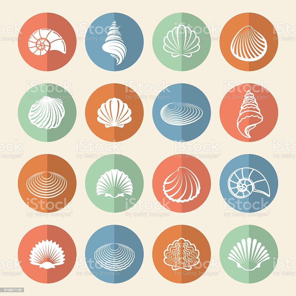 White sea shells icons set vector art illustration