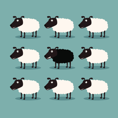 White Sheep And Black Sheep Stock Illustration - Download Image Now