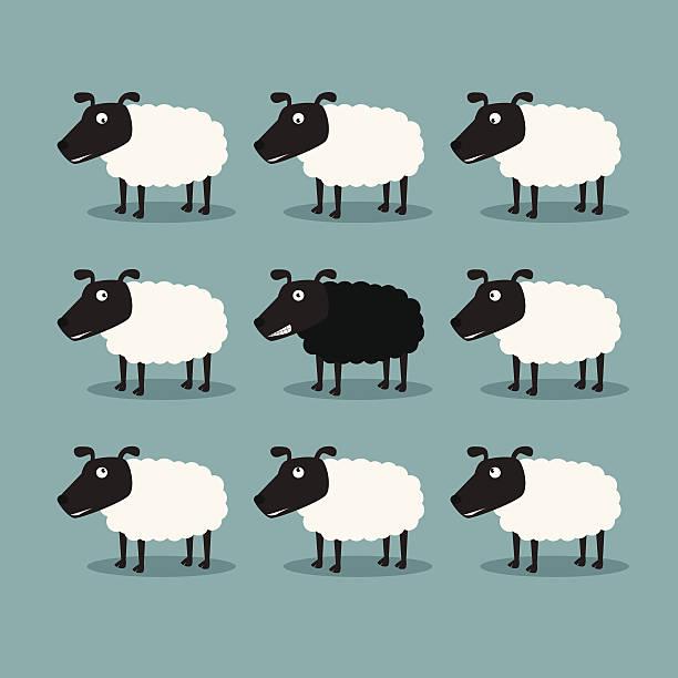 White sheep and black sheep vector art illustration