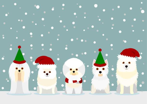 サンタクロースの帽子をかぶった白い小さな犬 ベクターアートイラスト