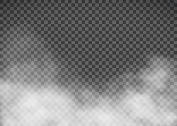 화이트 투명 한 배경에 연기입니다. 템플릿 안개입니다. - 구름 stock illustrations