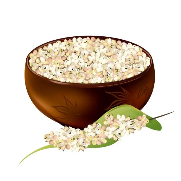 ilustrações de stock, clip art, desenhos animados e ícones de white sorghum grains in ceramic bowl, realistic vector illustration. - quinoa