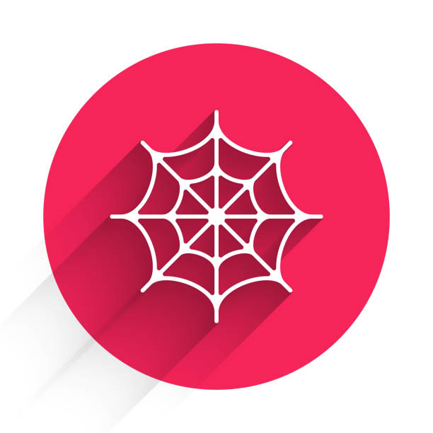 White Spider web icon isolated with long shadow. Cobweb sign. Happy Halloween party. Red circle button. Vector White Spider web icon isolated with long shadow. Cobweb sign. Happy Halloween party. Red circle button. Vector. arachnid stock illustrations