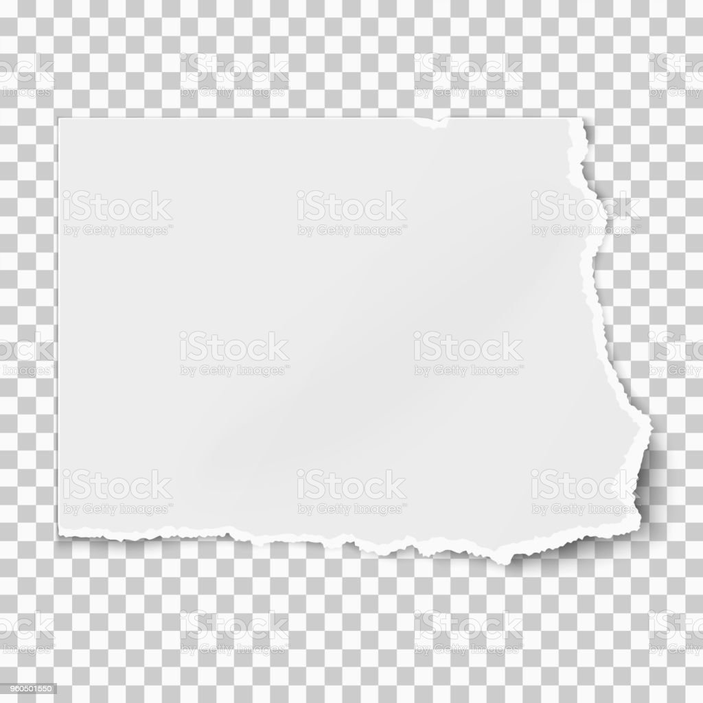 White square paper tear isolated on white background with soft shadow. Vector illustration. vector art illustration